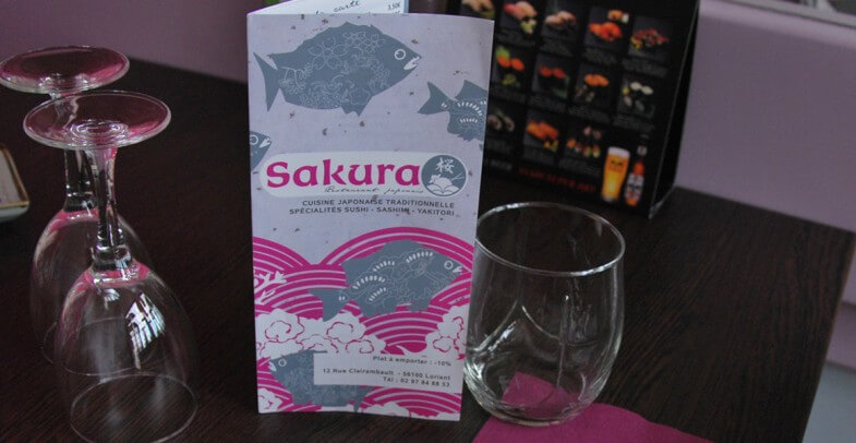 sakura_13-785x406.jpg
